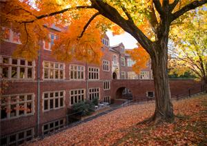 autumn scene of building and orange leaves on tree