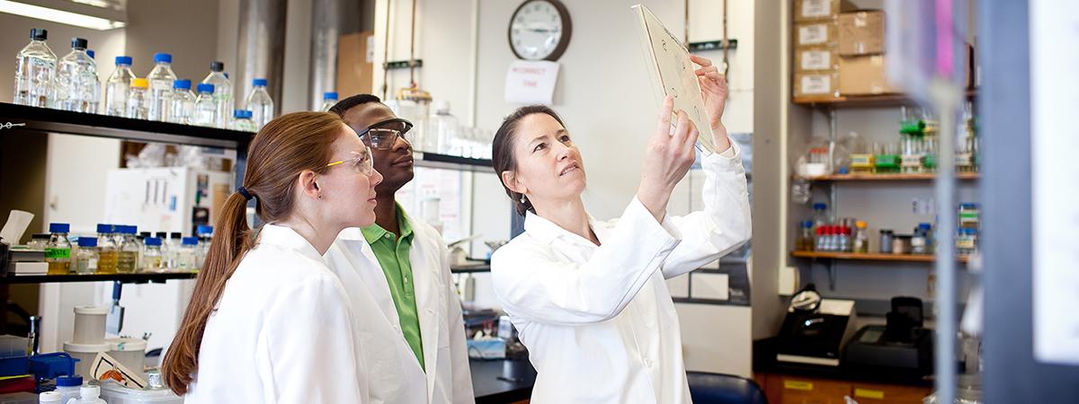 ut_sciencelabs_diversity-page